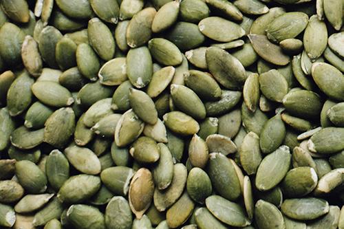 Kürbiskernprotein pflanzliche Proteinquelle